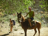 Uzbekistan Mountain Horseback-Riding